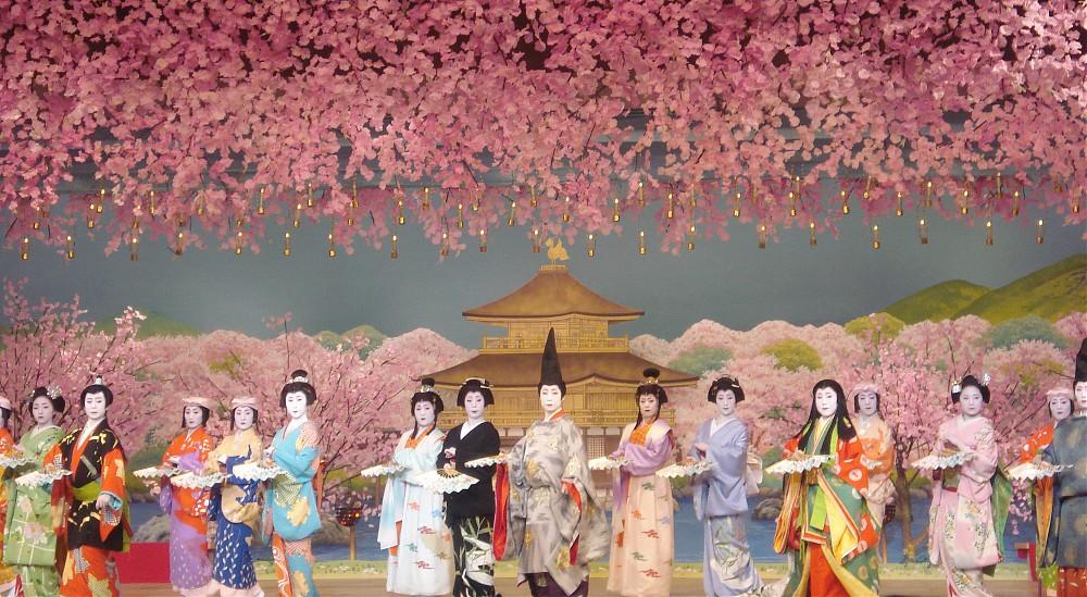 photoblog image Cherry Blossom Dance